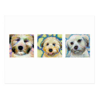 Tres pinturas de trigo de Terrier - arte del perro Postales