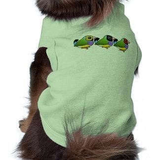 Tres pinzones de Gouldian Camisetas De Perrito