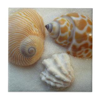 Tres poca playa descasca la baldosa cerámica azulejo cuadrado pequeño