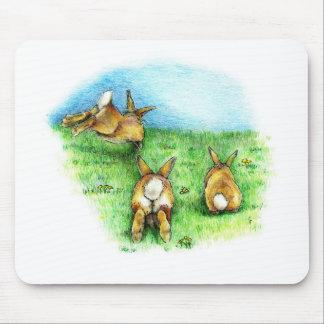 Tres poco Binkies Mousepads