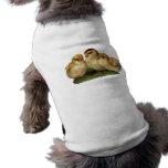 tres polluelos del bebé camiseta de mascota
