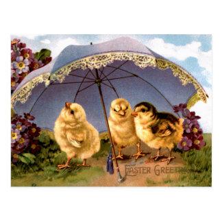 Tres polluelos encantadores de Pascua Postal
