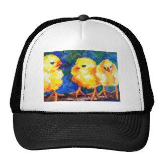 Tres polluelos profundamente en la conversación gorro