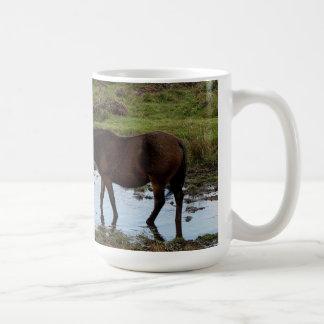 Tres potros de Dartmoor que beben en el agujero de Tazas De Café