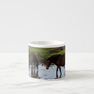 Tres potros de Dartmoor que beben en el agujero de Tazas Espresso