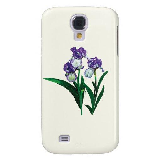 Tres púrpuras e iris blancos