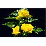 Tres rosas amarillos escultura fotográfica