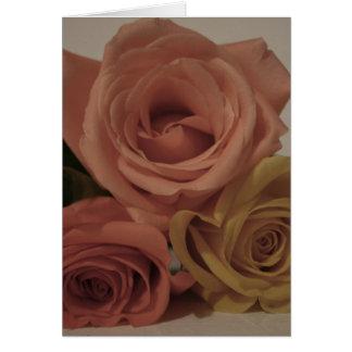 tres rosas pálidos coloreados en sombras del vinta tarjetas