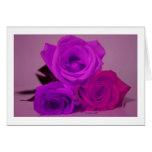 Tres rosas, púrpura teñida en una parte posterior tarjeta pequeña