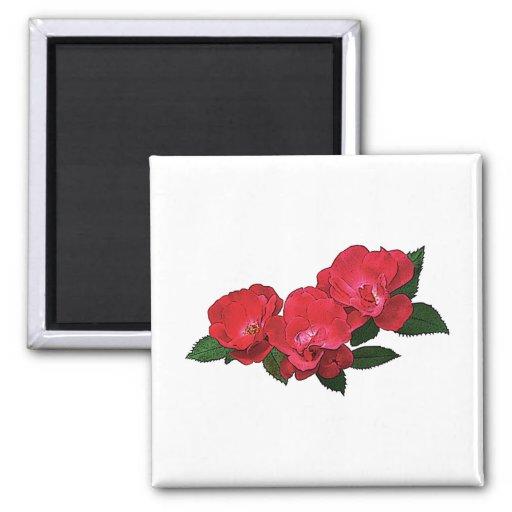 Tres rosas rojos iman de nevera