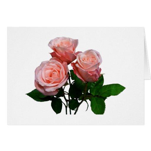 Tres rosas rosas claros tarjetón