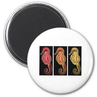 Tres Seahorses tribales en placas negras