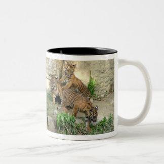 Tres tigre Cubs Tazas De Café