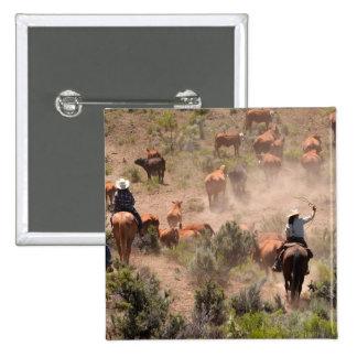 Tres vaqueros y vaqueras que conducen ganado pin cuadrada 5 cm
