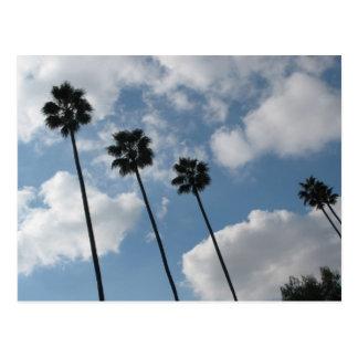 tres y nubes de la palma tarjeta postal