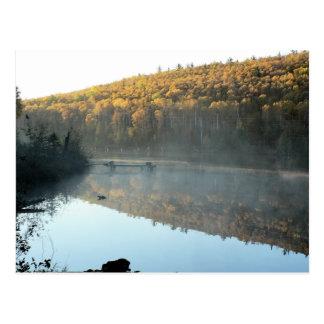 Trestle Pine Morning Postcard