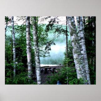 Trestle Pine Summer Print