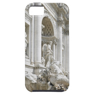 Trevi Fountain iPhone 5 Cases