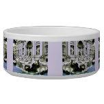 Trevi Fountain Dog Bowls