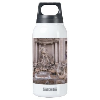 Trevi Fountain Insulated Water Bottle