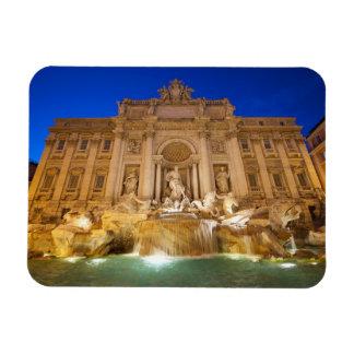 Trevi Fountain Rectangular Photo Magnet