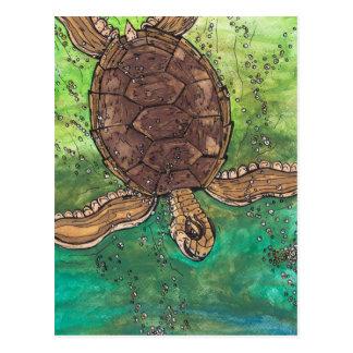 Trevor la postal de la tortuga