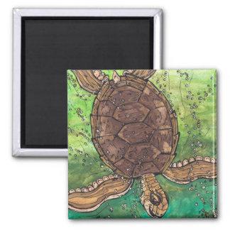 Trevor the Turtle Magnet
