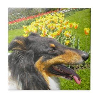 Tri Collie N the Tulips Tile Trivet tile