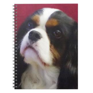 Tri-color Cavalier King Charles Spiral Notebook