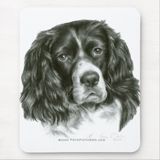 cocker spaniel tricolor tri color cocker spaniel mouse pad zazzle 3668