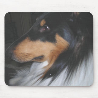 Tri-color Collie in deep thought Mouse Pad