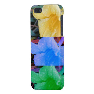 Tri-Color Daffodils iPhone 5 Cover