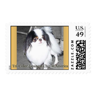 Tri-Color Japanese Chin Postage Stamp