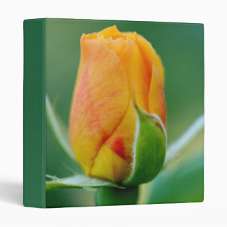 Tri-Color Rosebud: Peach Hints of Red & Yellow Binder