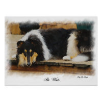 Tri Color Rough Collie Gifts Art print