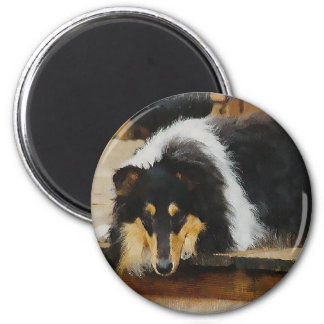 Tri-Color Rough Collie Gifts Magnet