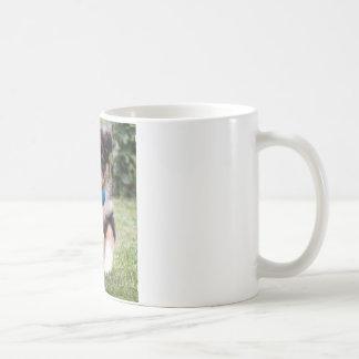 Tri Colored Australian Shepherd Pup Coffee Mug