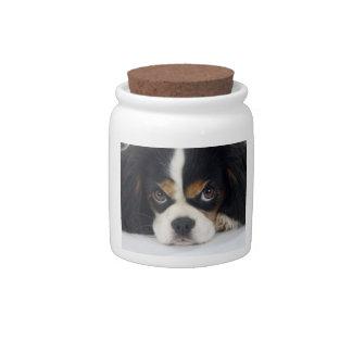 Tri-Colored Cavalier Spaniel Candy Jar