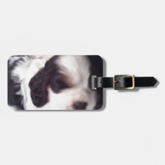 Tri colored cocker spaniel puppy tags for bags