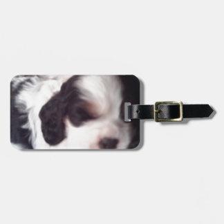 Tri colored cocker spaniel puppy tag for luggage