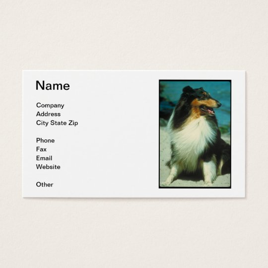 Tri-Colored Collie Business Card