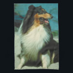 """Tri-Colored Collie Dog Kitchen Towel<br><div class=""""desc"""">Perfect at home,  in the car,  at the dog park,  dog shows etc.</div>"""