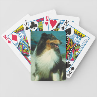 Tri-Colored Collie Dog Playing Cards