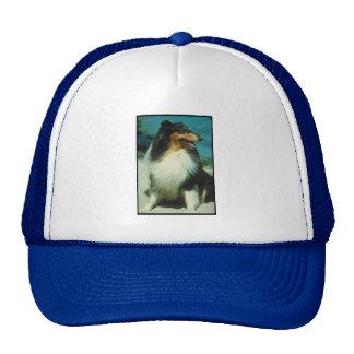 Tri-Colored Collie Rough Coat Trucker Hat