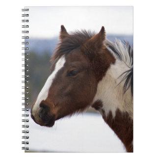 Tri-Colored Horse Notebook