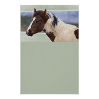 Tri-Colored Horse Stationery