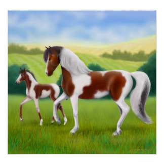 Tri Colored Paint Horse and Foal Poster