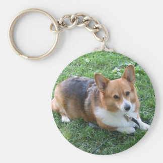 TRI-COLORED PEM IN GRASS BASIC ROUND BUTTON KEYCHAIN