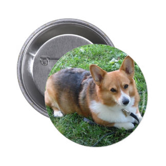 TRI-COLORED PEM IN GRASS PINBACK BUTTONS