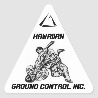 Triangle sticker with Hawaiian ground Control Logo